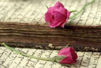 Schrijf prachtige liefdesbrieven zelf - dus slaagt's