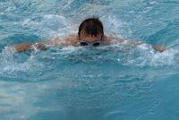 """""""Dolphin"""" zwemmen - zodat u kunt werken uit het zwembad stijl"""