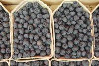 Bosbessen en calorieën - weten over de vrucht