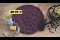 Verwijder hond urine van tapijt - dus het zal werken