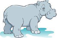 Het nijlpaard in de achtbaan - Instructies