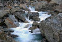 Welke rivieren hun oorsprong in de Alpen?
