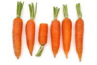 Wortelen tegen winderigheid en diarree - recept voor de wortel soep te Moro