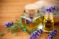Breng lavendel tegen muggen goed