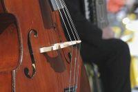 Bass - handvatten leren