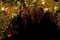 Ideeën voor een kerstkrans - dus het is modern en uitzonderlijk