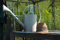 Mooie tuin - decoraties voor het koude seizoen