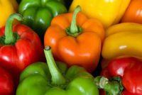 Kunnen honden eten paprika?  - Handige tips voor Barfen