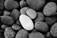 """""""Stone in steen"""" - oorsprong en betekenis van de uitdrukking"""