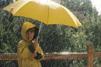 Hoeveel regen betekent dat de millimeter hoogte?