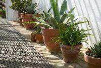 Reinigen terracotta potten goed
