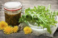 Verzamel wilde planten en te gebruiken in de keuken - Tips