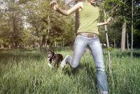 Vink controle voor honden - hoe u uw huisdier te beschermen