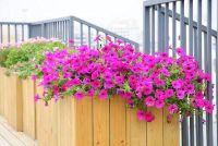 Build planter gemaakt van hout zelf