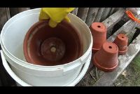 Clean klei potten - als bloempotten zijn schoon