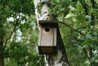 Building instructies - nestkast voor papegaaien