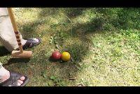 Croquet - Instructies voor de huis tuin