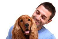 Hoe de pols bij honden te meten?