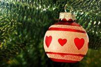 Suiker in het water voor de kerstboom?  - Hoe goed zorg voor hem