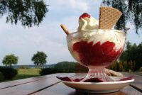 Zuivel recepten - zodat je melk in desserts vervangen