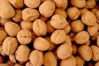 Schimmel met walnoten - zodat u voorkomen dat hem