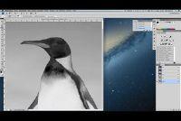 Photoshop Tutorial - Hoe om te werken met alfa-kanalen