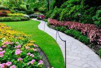All-seizoen bloeier - zodat u de tuin het hele jaar door te transformeren in een zee van bloemen
