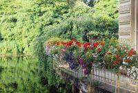 Herplanten balkon bloembakken op het balkon rechts
