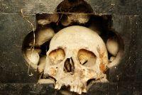 """Gormogon - achtergrondinformatie over """"Bones"""""""