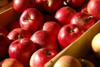 Hoeveel appels voor 1 liter appelsap?  - Om de drank zelf geleden te maken