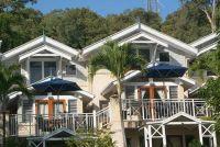 Planten Balkon bloemen recht voor zonnige georiënteerde balkons