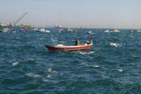 De visserij op kabeljauw - met deze technieken maken het werk
