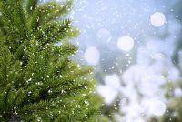 Geur van Kerstmis - tips voor het kiezen
