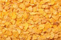 Glutenvrije granen Kopen - Wat u moet dit overwegen