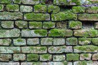 Metselwerk afvoer - elimineren vochtige muren