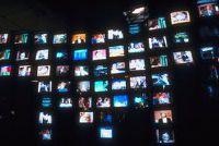Reality TV - nadelen en voordelen