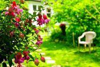 Beëindigen lease voor de tuin - hoe het correct gedaan