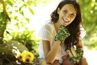 Tips voor het tuinieren in de lente