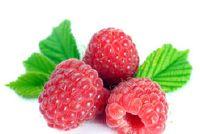Framboos blad thee - effecten op de vruchtbaarheid en de juiste toepassing