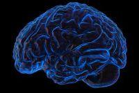 """Wat te doen met """"brain freeze""""?  - Wat u moet overwegen bij zeer koude dranken"""