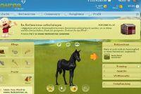 Stuur Met Howrse een paard in de lucht