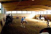 Leer paardrijden - instructies voor beginners