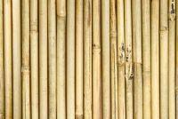 Bouwen en bamboe hek te behouden - dus het is mogelijk