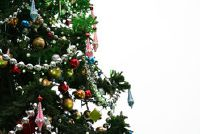 Welke kleur dit jaar voor de kerstboom?