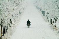 Bromfiets scooter winterklaar maken - zodat de scooter komt door de winter