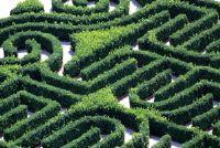 Verschil tussen doolhof en labyrint