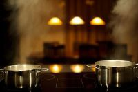 Inductie kookplaat buy - het moeten er rekening mee de