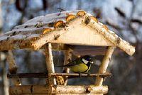 Gebouw instructies: Feeder voor vogels - Hier is hoe gemakkelijk