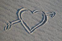 Welke kant is het hart?  - Meer over het menselijk lichaam Ontdek