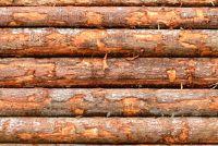 """Wat betekent """"hout werken""""?"""